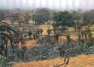 グレート・ジンバブエ遺跡の画像 p1_18